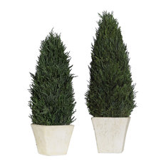 Classic Cypress Evergreen Topiary, Set of 2