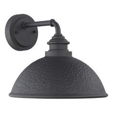 Englewood 1-Light Outdoor Medium Wall Lantern, Black