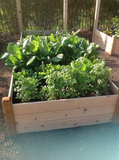 hochbeet richtig anlegen hochbeet anlegen welche pflanzen ein hochbeet richtig anlegen. Black Bedroom Furniture Sets. Home Design Ideas