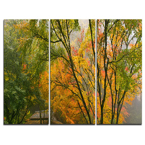 """""""Canopy of Maple Trees in Fall"""" Photo Canvas Print, 3 Panels, 36""""x28"""""""