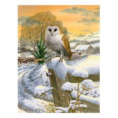 Sunset Barn Owl Flag Canvas, House Size