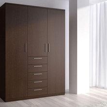 Modern Closet Storage by DAYORIS Doors / Panels