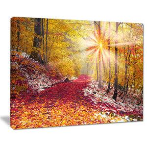 """Bright Yellow Sun in Alpine Forest"" Landscape Photo Wall Art, 40""x30"""