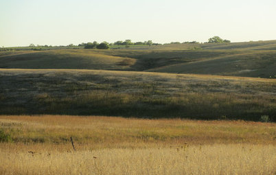 How to Get Your Prairie On