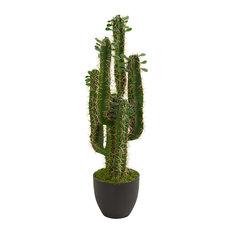 Artificial Plant, 2.5 Foot Cactus Plant