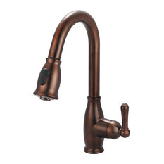 Accent Single Handle Pull-Down Kitchen Faucet, Oil Rubbed Bronze