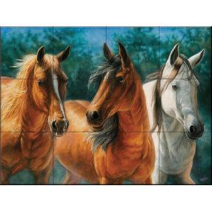 Tile Mural, Trio - CC, 60.8x45.6 cm