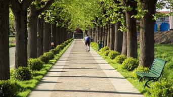 viale delle Rimembranze- Cisliano (Milan)