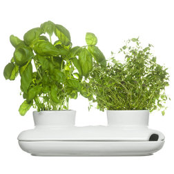 Modern Indoor Pots And Planters by Sagaform Inc