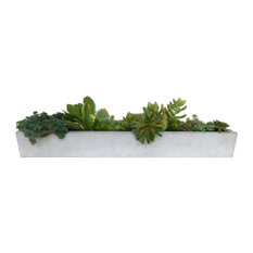 Concrete-Project - Concrete Window Sill Planter, White - Indoor Pots and Planters