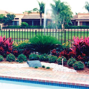 Pool Landscape in Boca Raton