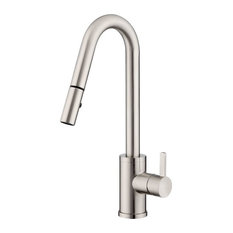 Danze D457130 Amalfi Pullout Spray Kitchen Faucet, Stainless Steel