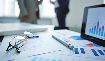 Pine tree Consultants Consulting Business