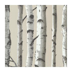 Irvin Gray Birch Tree Wallpaper, Bolt