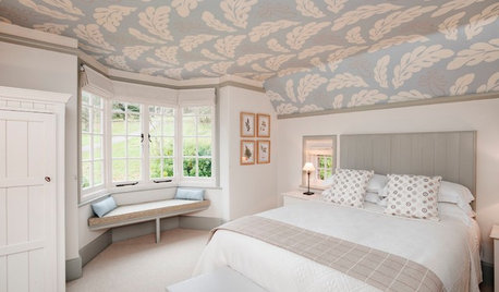 Standout Ceilings Give Rooms a Lift
