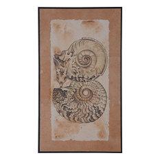 Nautilus Shells Wall Accent in Original Art