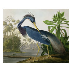 "Louisiana Heron Painted Wall Mural, 48"" x 48"""
