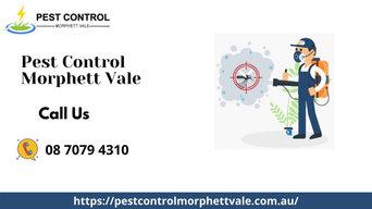 Pest Control Services in Morphett Vale, SA