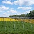 Wilson Nurseries & Landscape Supply's profile photo