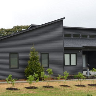 Mid-sized minimalist gray one-story vinyl exterior home photo in DC Metro with a shed roof