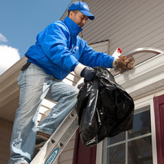 Prime Time Window And Gutter Cleaning Inc Chicago Il