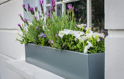 Ask an Expert: 13 Ways to Green-up Your Front Garden