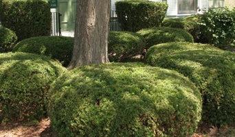 winters tree care