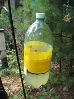 Yard, Garden & Outdoor Living Bird Feeder With Drinking Container Wall Or Post Fixed Neither Too Hard Nor Too Soft