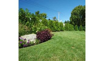 Procida Landscaping
