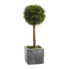 "15.75"" Tall ""Cypress"" Round Topiary, Green and Gray"