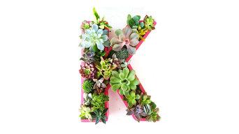 Succulent Monogrammed Planter