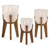 Amara Vases on Wood Stands, 3-Piece Set