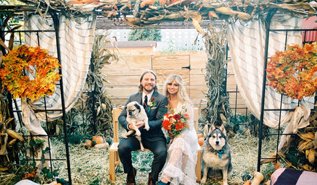 How One Couple Got a Perfectly Intimate Backyard Wedding
