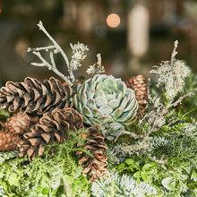 Steg för steg: Gör en grön juldekoration lika snyggt som proffset
