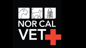 Nor Cal Veterinary Emergency and Specialty Hospital
