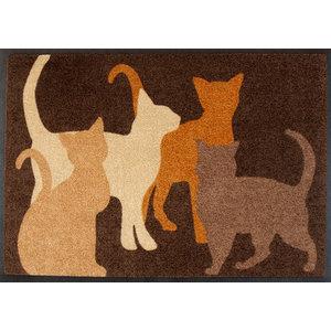 Easy Clean Cats Doormat