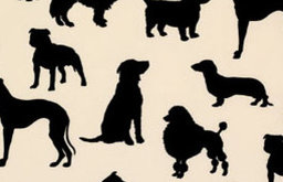 Dog Flock Velvet Wallpaper