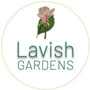 Lavish's photo