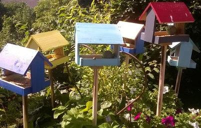 Vil du ha' fuglefløjt i haven? Så gælder det om at være doven