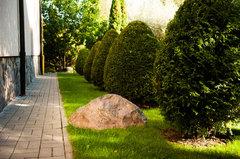Sichtschacht mitten im Garten