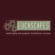 Eucascapes's photo