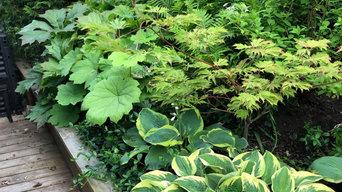 Radhusträdgård med japanska vibbar