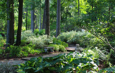 9 Peaceful Garden Scenes to Bring a Moment of Serenity
