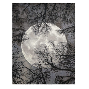 Twilight Rug, Moon, 168x244 cm