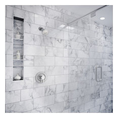 Moen Vichy Chrome Posi-Temp(R Shower Only T2662EP