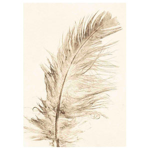 """""""Feather"""" Gold Paper Print, 50x70 cm"""