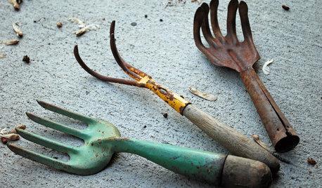 7 expertråd: Så undviker du vanliga vårmisstag i trädgården