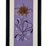 "Nature Artist - Purple Glory - * Oshibana (pressed plants) artwork in a 12"" x 22"" black frame."