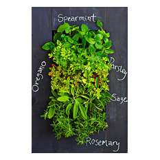 Shop Living Walls - GroVert Living Wall Kit, Chalkboard - Outdoor Pots and Planters