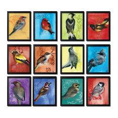 Colorful Framed Bird Study, Set of 12
